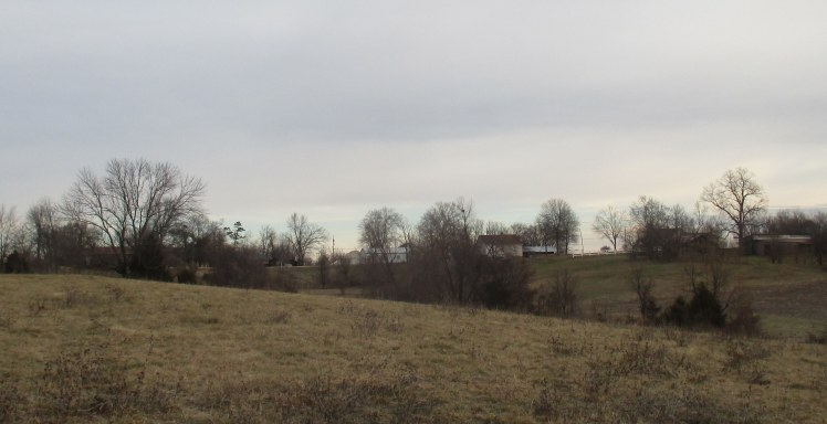 pasture-looking-north