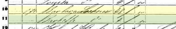barbara-lochner-1850-census