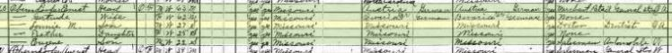 Leo Oberndorfer 1920 census