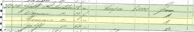 Herman Schuricht 1850 census St. Louis