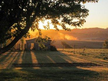 Brooder house sunrise