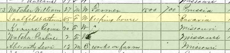 Catherine Saalfeld 1870 census Brazeau