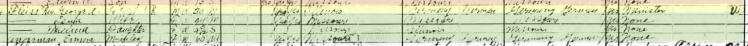George Fleiss 1920 census Pocahontas MO