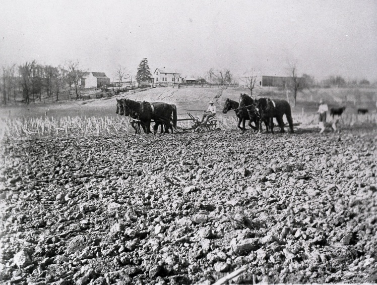 Similar Schmidt picture plowing