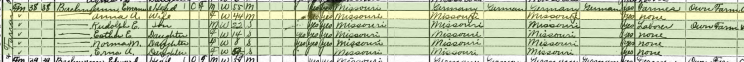 Emanuel Bachmann 1920 census Farrar