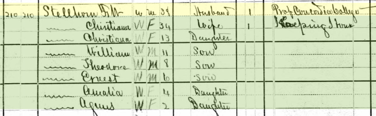 Frederick Stellhorn 1880 census Ft. Wayne IN