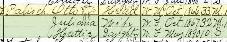 Otto Palisch 1900 census
