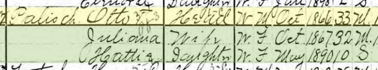 Otto Palisch 1900 census