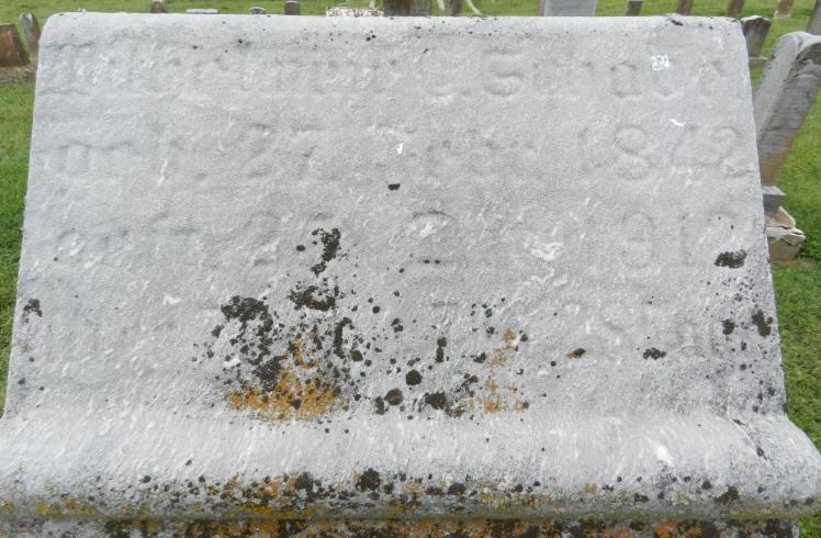 Wilhelmine Schade gravestone Immanuel Altenburg