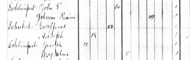 Adolph Schubarth 1876 MO census Altenburg