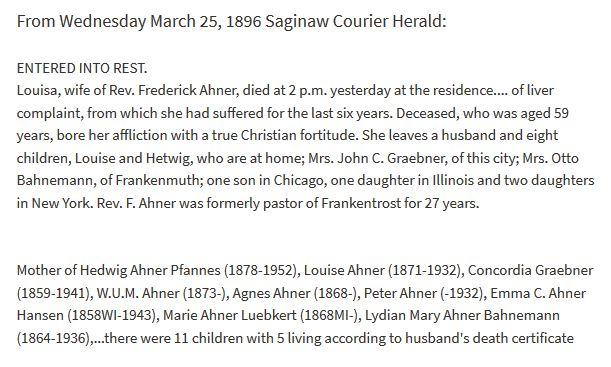 Louisa Schreiber Ahner obituary