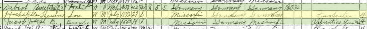 Theodore Hofstetter 1900 census Perryville