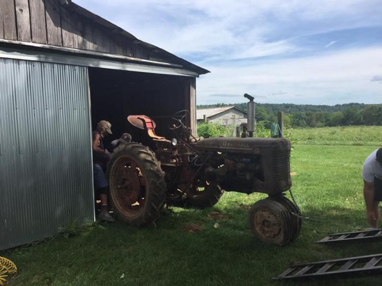 Farmall tractor Russel Brandes
