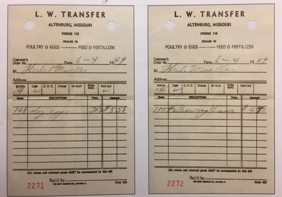 LW Transfer receipts