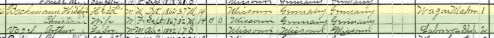 Theodore Bachmann 1900 census Frohna