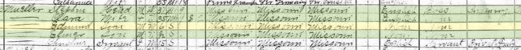 Edmund Mueller 1910 census Frohna