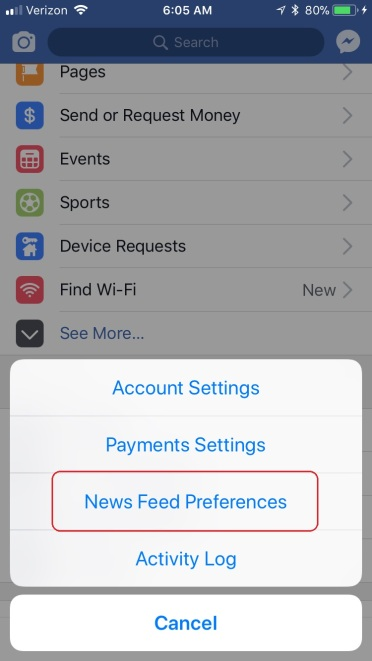 IPhone Facebook preferences 1