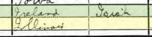 Martin Fitzpatrick 1920 census native tongue
