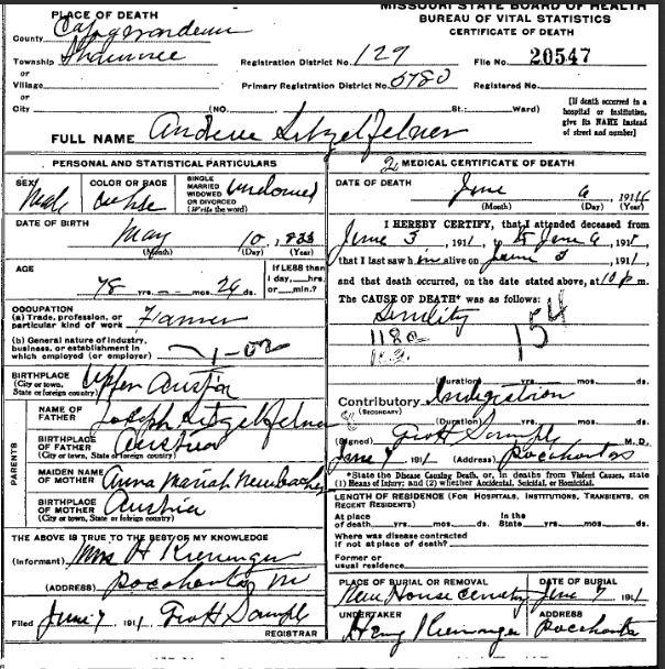 Andrew Litzelfelner death certificate