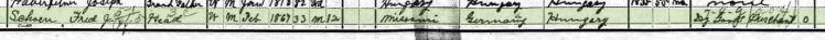 Theresia Kraml Schoen 1900 census 2 Cape County MO