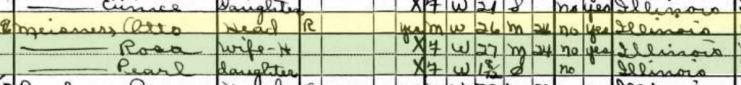 Otto Miesner 1930 census Kincaid Township IL