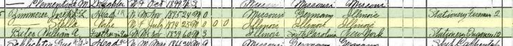 Stella Zimmerer 1900 census St. Louis MO