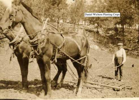 Daniel Wichern planting crops