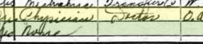 Gustav Herrmann 1920 census St. Louis MO occupation