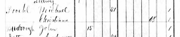 John Burroughs 1876 MO census Brazeau Township MO