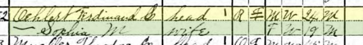 Ferdinand Oehlert 1920 census Brazeau Township MO