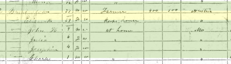elizabeth bruhl 1870 census apple creek township, mo
