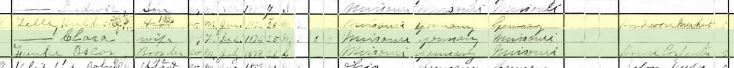 gottwerth telle 1900 census longtown mo