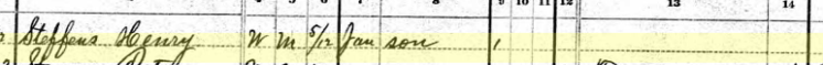 henry steffens 1880 census 2 salem township mo