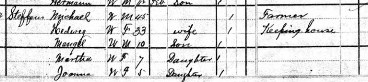 henry steffens 1880 census salem township mo