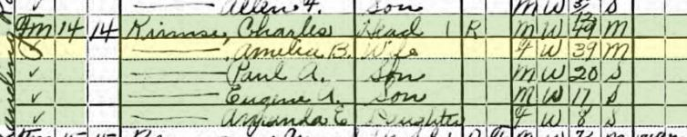 paul heise 1920 census salem township mo