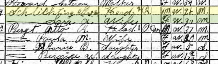 Albert Schlichting 1920 census Davison Township NE