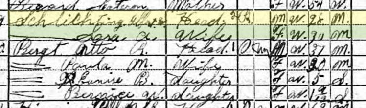 Albert Schlichting 1920 census Davison Township NE