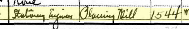 Ludwig Kirchner 1930 census St. Louis MO occupation