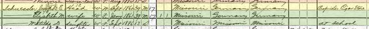 Joseph Schuessler 1900 census St. Louis MO