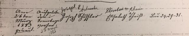 Schuessler Theiss marriage record Trinity Altenburg MO