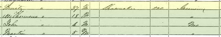 Ernst Moritz Grosse 1850 census St. Louis MO
