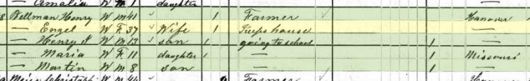 Henry Bellmann 1880 census Brazeau Township MO