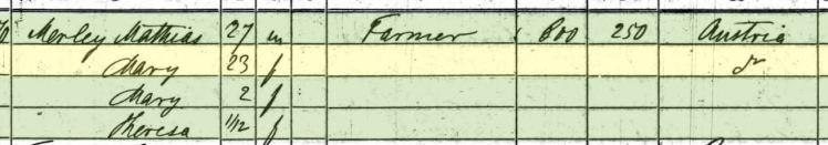 Matthias Mirly 1860 census Shawnee Township MO