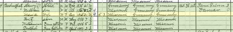William Bodenschatz 1910 census Brazeau Township MO