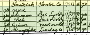 William Hoffmann 1930 census occupations St. Louis MO