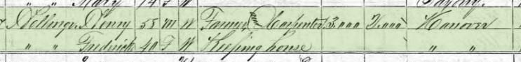 Ferdinand Hellwege 1870 census 1 Brazaeu Township MO