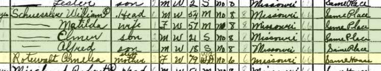 Amalia Rodewald 1940 census Bois Brule Township MO