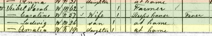Amalie Seibel 1880 census Brazeau Township MO