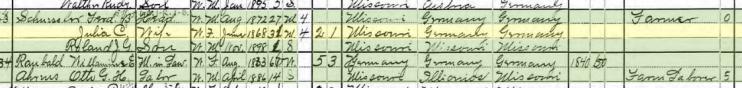 Ferdinand Schuessler 1900 census Brazeau Township MO