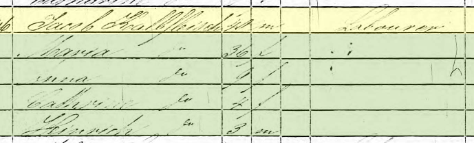 Jacob Kalbfleisch 1850 census St. Louis MO